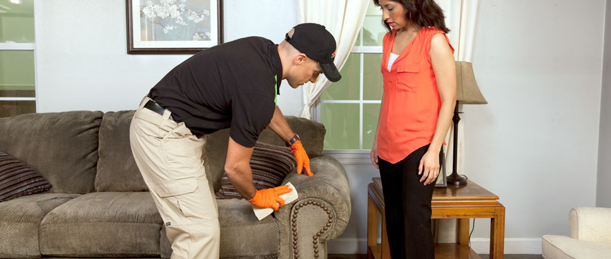 Humboldt, TN carpet upholstery cleaning